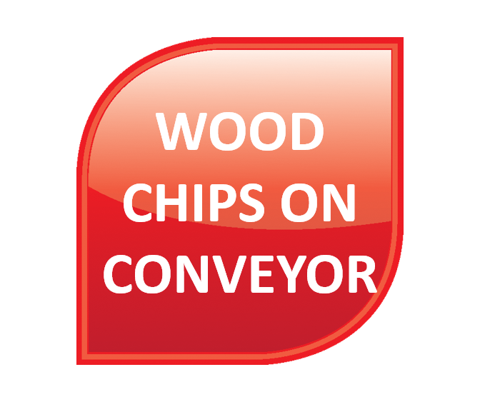 Wood - Wood Chips on Conveyor