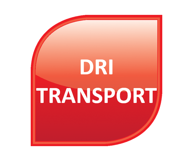 Iron to Steel - DRI Transport