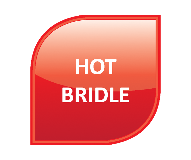CAL - Hot Bridle